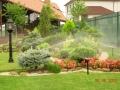 Спринклерный полив растений