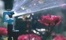 sprinkler8
